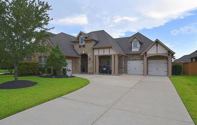 League City Single Family Home For Sale: 1327 Altavilla Lane