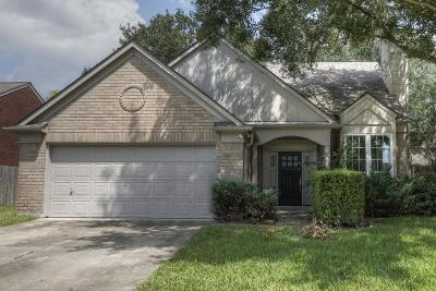 Houston Single Family Home For Sale: 10130 Red Wolf Lane
