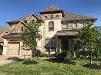 Tomball Single Family Home For Sale: 9607 Brannok Lane