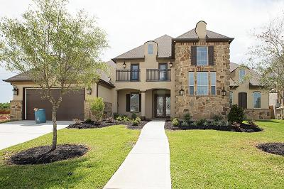 Single Family Home For Sale: 1302 Tamina Pass Lane