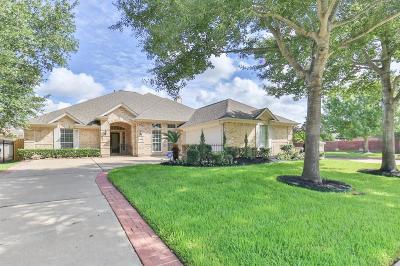 Houston Single Family Home For Sale: 14002 Briar Heath Drive