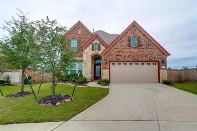 Cypress Single Family Home For Sale: 20719 Max Sky Court