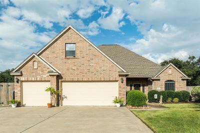 Angleton Single Family Home For Sale: 1009 Enchanted Oaks Drive