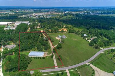 Montgomery Farm & Ranch For Sale: 20052 Hilltop Ranch Drive