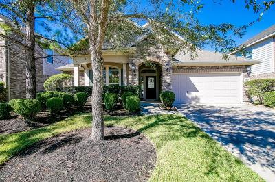 Cinco Ranch Single Family Home For Sale: 24930 Garnet Shadow Lane
