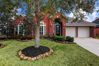 Friendswood Single Family Home For Sale: 2401 Ivy Stone Lane