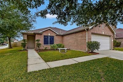 Tomball Single Family Home For Sale: 19707 Rippling Brook Lane