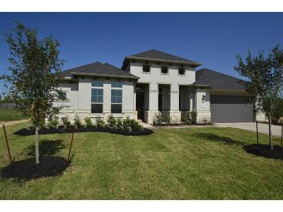 Katy Single Family Home For Sale: 1314 Windy Thicket Lane
