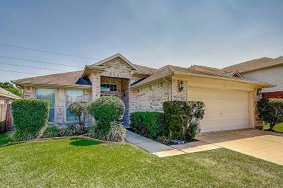Tomball Single Family Home For Sale: 12231 Piney Bend Drive