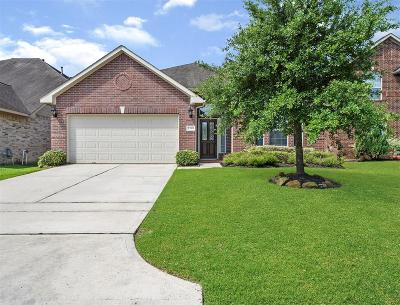 Tomball Single Family Home For Sale: 23319 W Pine Ivy Lane