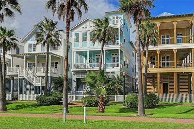 Galveston Single Family Home For Sale: 810 Shiraz Passage