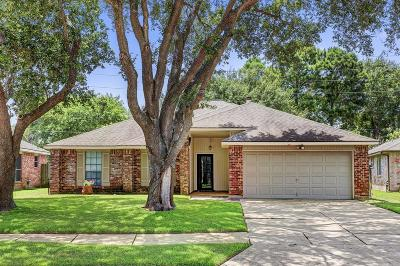 Katy Single Family Home For Sale: 1234 Brook Grove Drive