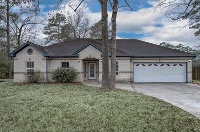 Porter Single Family Home For Sale: 23992 Briar Berry Lane