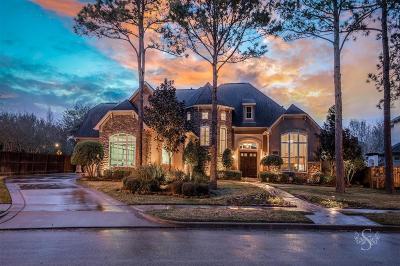 Katy Single Family Home For Sale: 24918 Misty Heath Ln