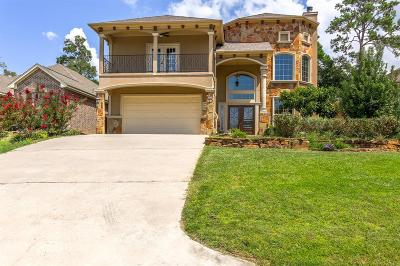 Conroe Single Family Home For Sale: 12329 Pebble View Drive