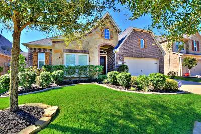 Fulshear Single Family Home For Sale: 28015 Brandy Creek Lane