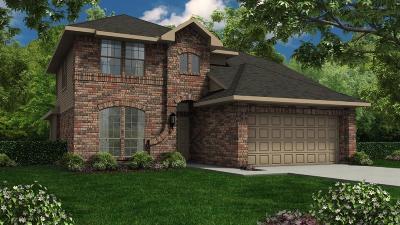 Rosenberg Single Family Home For Sale: 1911 Rocky Point Lane