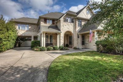 Conroe Single Family Home For Sale: 127 Brendan Woods Lane
