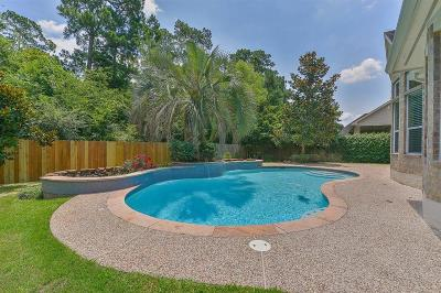 The Woodlands Single Family Home For Sale: 11 E Shale Creek Circle