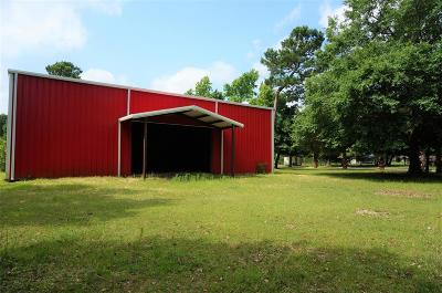 Single Family Home For Sale: 1015 County Road 379