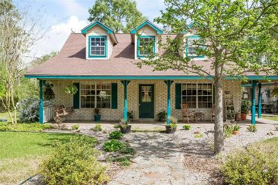 Dayton Single Family Home For Sale: 314 County Road 6490