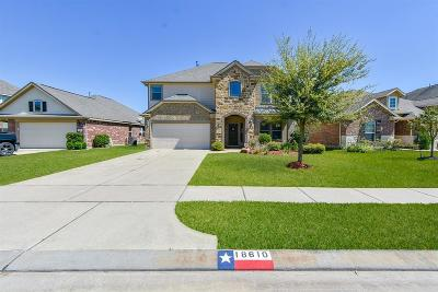 Tomball Single Family Home For Sale: 18610 Bristol Point Lane