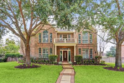 Sugar Land Single Family Home For Sale: 51 Twin Valley Drive