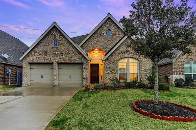 Pearland Single Family Home For Sale: 3627 Cibolo Court