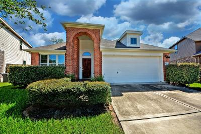 Katy Single Family Home For Sale: 20607 Wood Rain Court