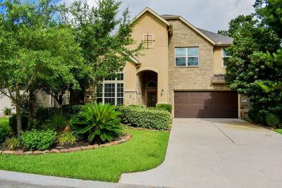 The Woodlands Single Family Home For Sale: 42 Canoe Bend