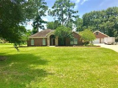 Tomball Single Family Home For Sale: 8919 Seber Drive
