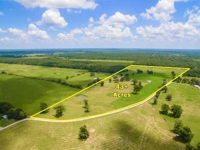 Country Home/Acreage For Sale: Thomas Castleberry