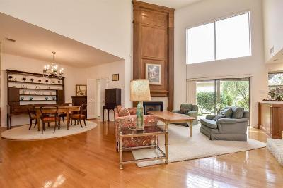 Houston Condo/Townhouse For Sale: 9607 Doliver Drive