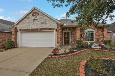 League City Single Family Home For Sale: 6158 Cornell Lane