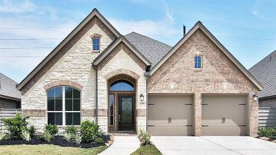 Manvel Single Family Home For Sale: 2341 Olive Forest Lane