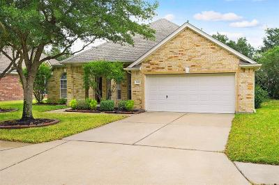 Houston Single Family Home For Sale: 11434 Bogan Flats Drive