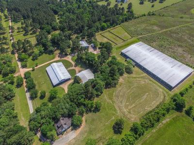 Tomball Farm & Ranch For Sale: 18450 Juergen Road
