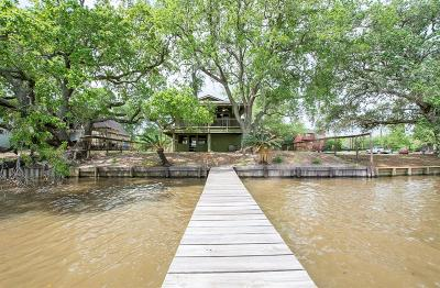 Brazoria Single Family Home For Sale: 4635 Rio Drive