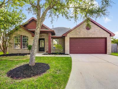 League City Single Family Home For Sale: 2983 Autumn Brook Lane