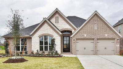 Sugar Land Single Family Home For Sale: 3706 Serrano Valley Lane
