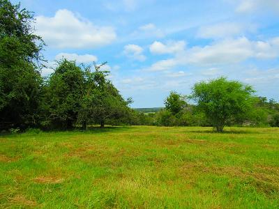 Farm & Ranch For Sale: 8081 Ernst Parkway