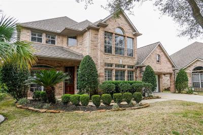 Houston Single Family Home For Sale: 9411 Bayou Lake Lane
