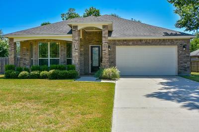 Houston Single Family Home For Sale: 8502 Argentina Street
