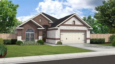 Missouri City Single Family Home For Sale: 3711 Altino Court