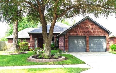 Spring Single Family Home For Sale: 19619 Kilborne Park Lane