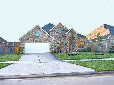 Sugar Land Single Family Home For Sale: 6230 Garden Lakes Lane