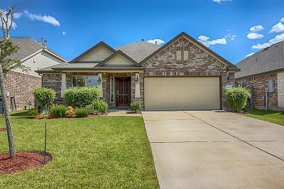 League City Single Family Home For Sale: 6809 Linden Creek Lane