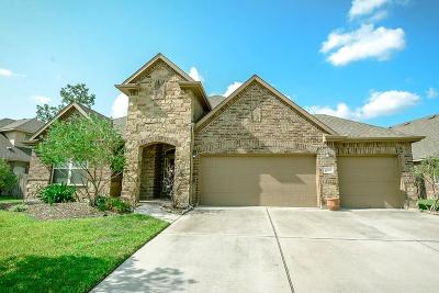 Humble Single Family Home For Sale: 17223 Cascading Springs Lane