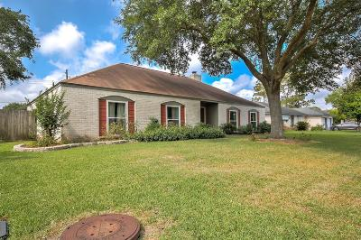 Houston Single Family Home For Sale: 11011 Radford Lane
