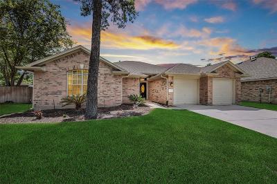Tomball Single Family Home For Sale: 19507 Dakota Springs Drive